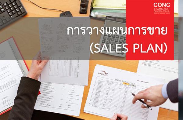 โครงการ ''การวางแผนการขาย (Sales Plan)''